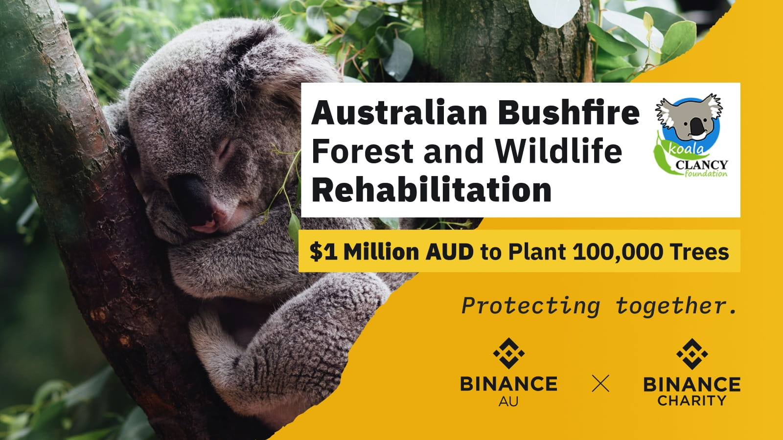 Binance Charity Pledges To Raise $1M AUD To Plant 100,000 Trees In AustraliaCryptocurrency Trading Signals, Strategies & Templates | DexStrats