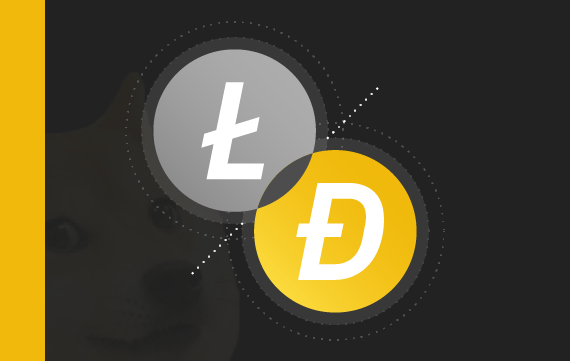 Case Study: Merged Mining in Dogecoin & Litecoin
